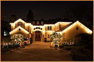 Oakland Christmas Lights (510) 508-8950